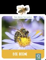 Mein kleines Tier-Lexikon - Die Biene